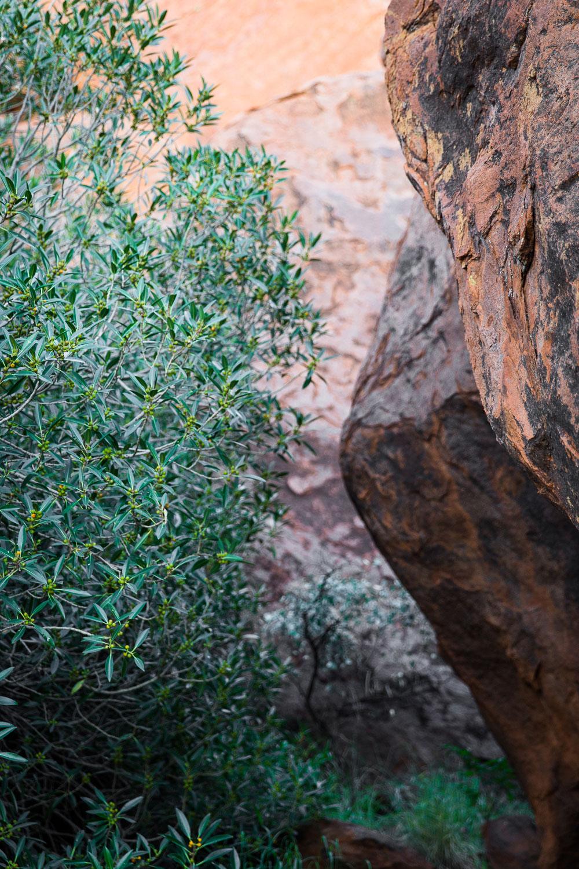 Uluru rock face