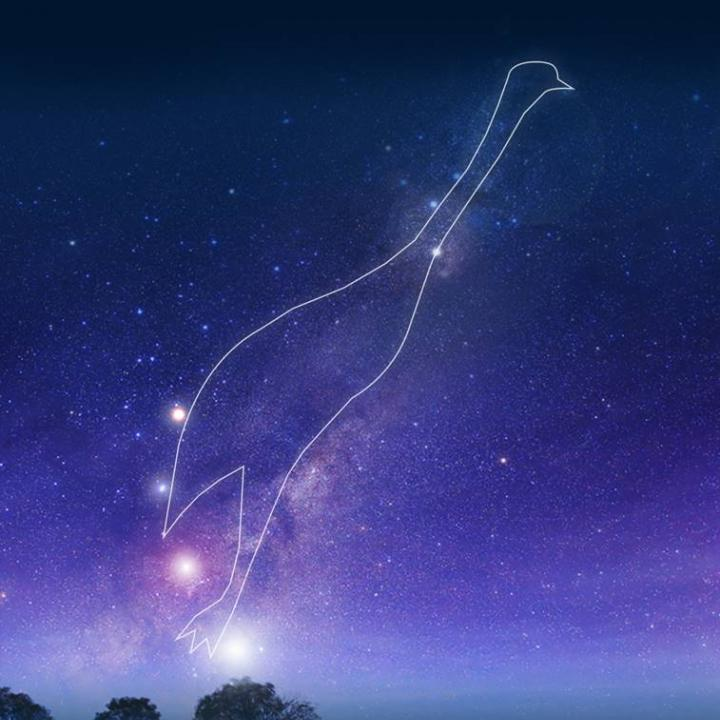 Emu in the Sky constellation